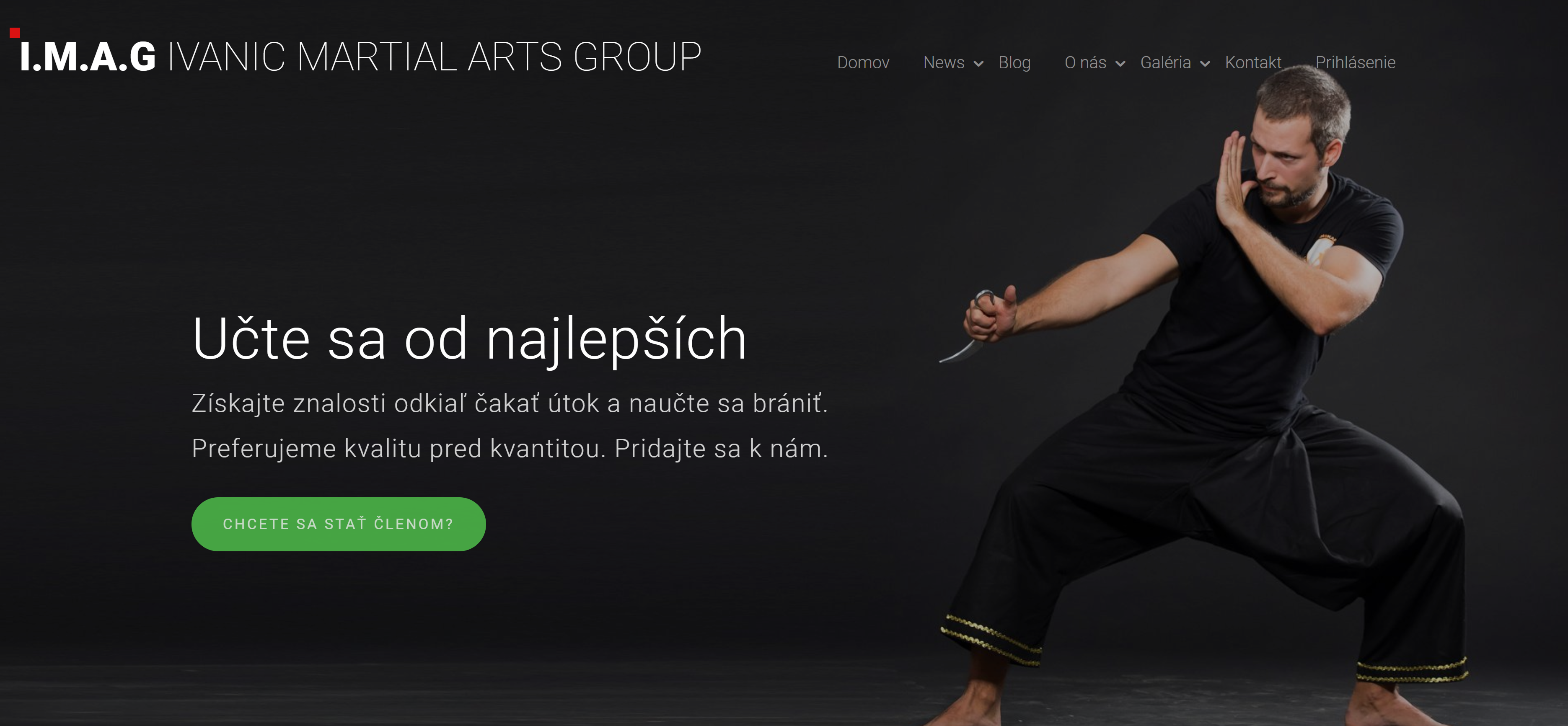 Ivanic Martial Arts Group